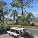After Hurricane Michael at Campers Inn